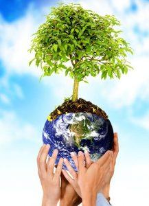 albero della terra